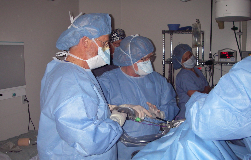veterinary surgical procedure